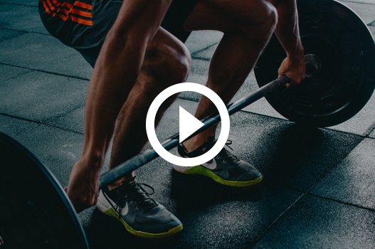 gym and fitness online reputation management