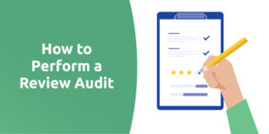 How to Perform a Review Audit